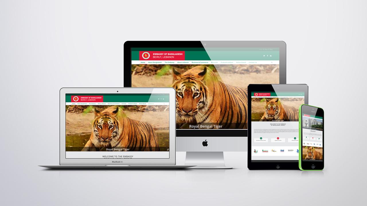 Embassy of Bangladesh Government, Professional website development for embassy